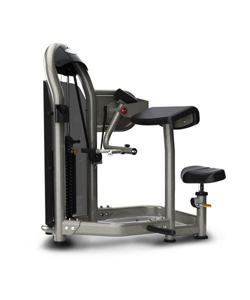 Arm-Curl-G3-S40